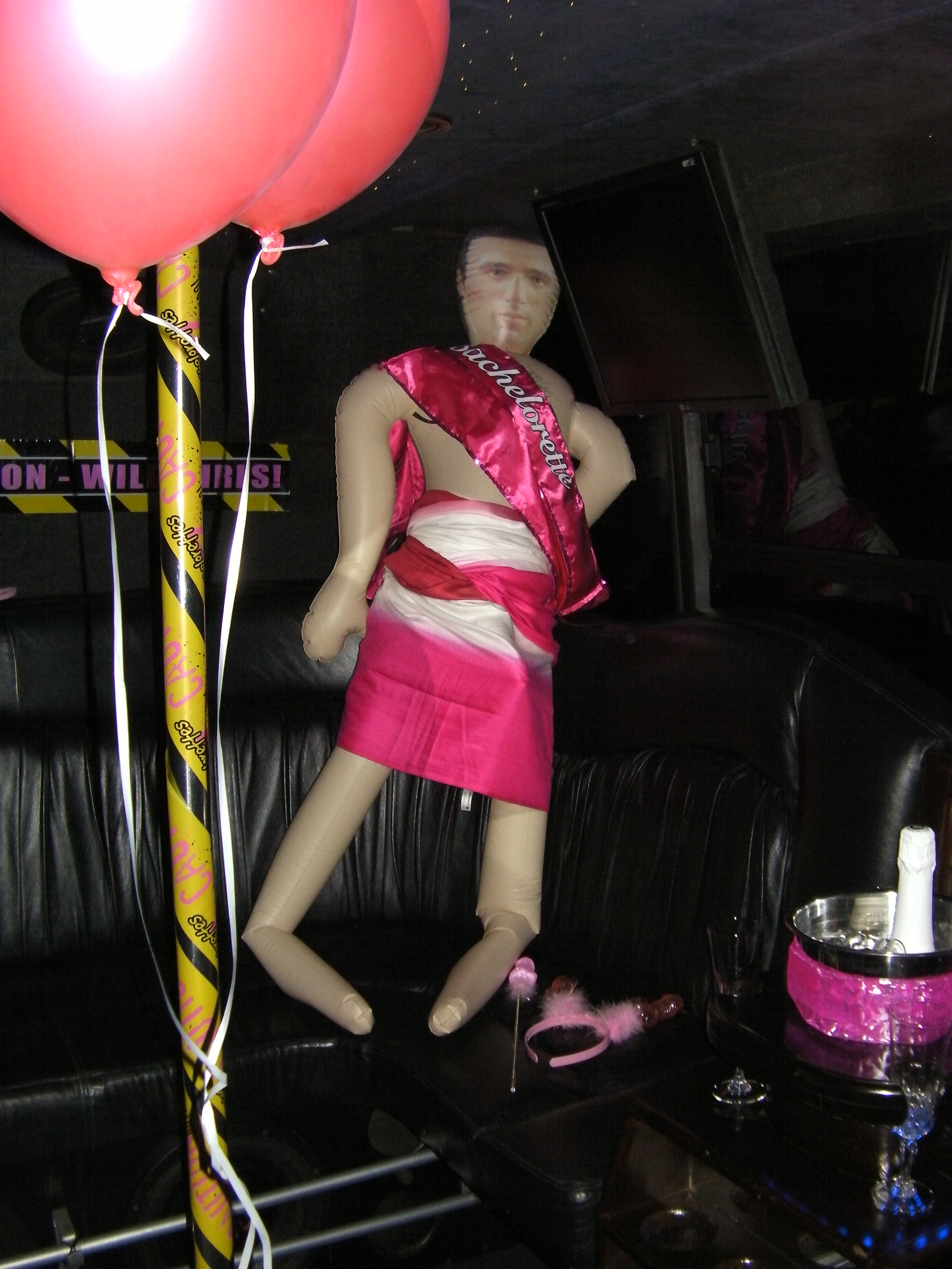 SANY0007 - VIP Party Bus Bachelorette